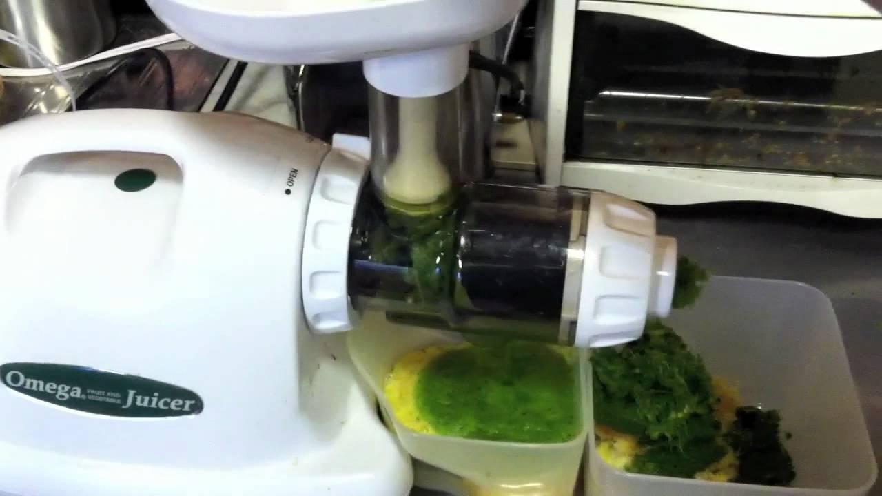 Omega 8224 idéal pour les jus verts