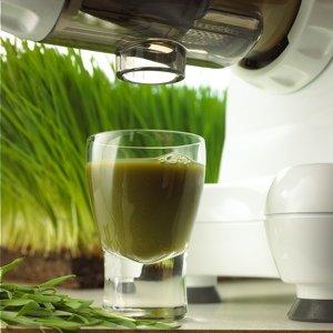 omega 8224 pour jus vert